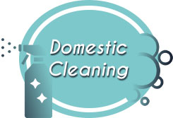 domestic cleaning icon