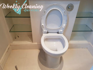 professional cleaning in london